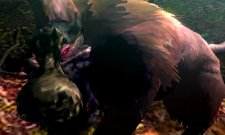 Monster Hunter 4 mh4-9