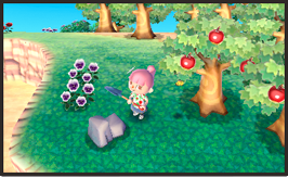 Animal-Crossing_1