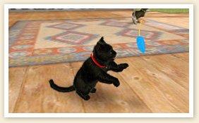 Nintendogs-+-Cats_14