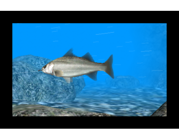 Reel-Fishing-Paradise-3D_2