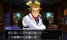 Ace-Attorney-5-Phoenix-Wright-Dual-Destinies_16-05-2013_screenshot-19