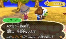 Animal Crossing 3ds l 29.10.2012 (1)