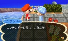 Animal Crossing 3ds l 29.10.2012 (6)