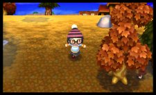 Animal-Crossing-New-Leaf_14-02-2013_screenshot-6