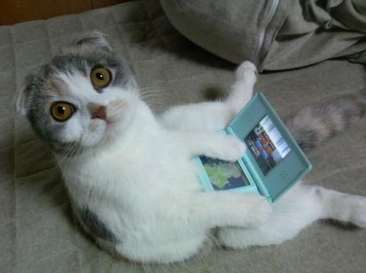 Chat-console-DS-nintendo