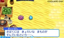 dragon-quest-heroes-rocket-slime-3-screenshot_2011-03-28-01