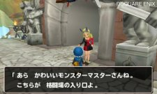 Dragon-Quest-Monsters-Terry's-Wonderland_21-12-2011_screenshot-12