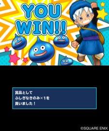 Dragon-Quest-Monsters-Terry's-Wonderland_29-04-2012_screenshot-29