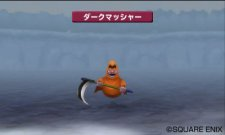 Dragon Quest Monsters- Terry's Wonderland 3D images screenshots 021.jpg