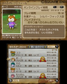 Dragon-Quest-X_Application-3DS_27-07-2012_screenshot-5