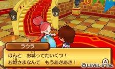 Fantasy-Life_15-10-2011_screenshot-10