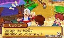 Fantasy-Life_15-10-2011_screenshot-7