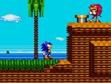 Images-Screenshots-Captures-Game-Gear-Sonic-Tails-320x240-03032011