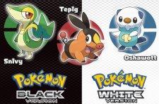 logo-pokemon-black-white