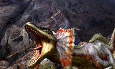 Monster-Hunter-4_01-11-2012_screenshot-1