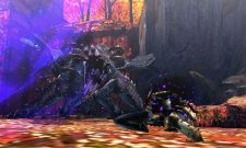 monster Hunter 4 08.11.2012 (4)