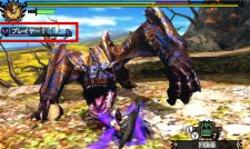 monster Hunter 4 08.11.2012 (7)