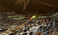 Monster Hunter 4  11.10.2012 (16)