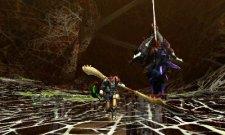 Monster Hunter 4  11.10.2012 (17)