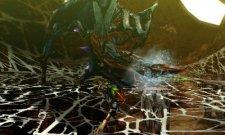 Monster Hunter 4  11.10.2012 (21)