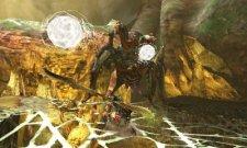 Monster Hunter 4  11.10.2012 (22)