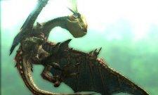 Monster Hunter 4  11.10.2012 (23)