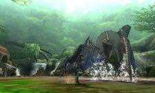 Monster Hunter 4  11.10.2012 (25)