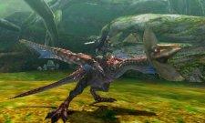Monster Hunter 4  11.10.2012 (28)