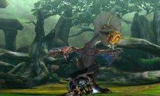 Monster Hunter 4  11.10.2012 (29)