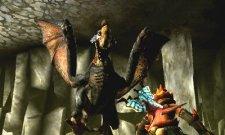Monster Hunter 4  11.10.2012 (30)