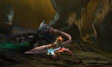 Monster Hunter 4  11.10.2012 (32)