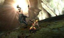 Monster Hunter 4  11.10.2012 (33)