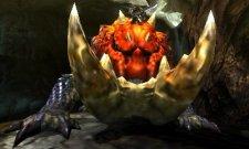 Monster Hunter 4  11.10.2012 (8)