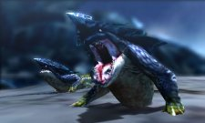 Monster-Hunter-4_16-05-2013_screenshot-14