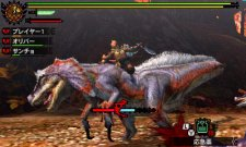 Monster-Hunter-4_22-09-2012_screenshot-1