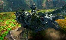 Monster Hunter 4 27.06.2013 (11)