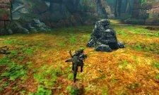 Monster Hunter 4 27.06.2013 (12)