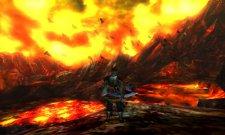 Monster Hunter 4 27.06.2013 (3)