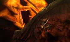 Monster Hunter 4 27.06.2013 (5)
