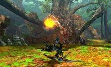 Monster Hunter 4 27.06.2013 (6)