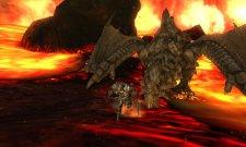 Monster Hunter 4 27.06.2013 (7)