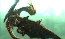 Monster-Hunter-4_31-05-2013_screenshot-4