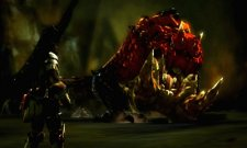 Monster-Hunter-4_31-05-2013_screenshot-5