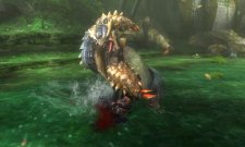 Monster Hunter Tri G - 14