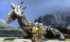 Monster Hunter Tri G - 1