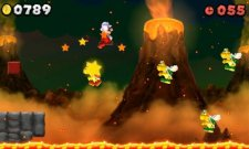 New-Super-Mario-Bros-2_01-10_2012_screenshot-11