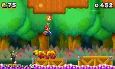 New Super Mario Bros. 2 08.06 (2)