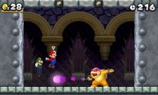 New Super Mario Bros. 2 08.06 (3)