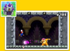 New-Super-Mario-Bros-2_18-07-2012_screenshot-5