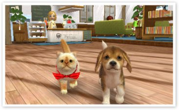 Nintendogs-+-Cats_24